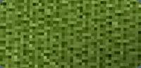 Gurtfarbe oliv