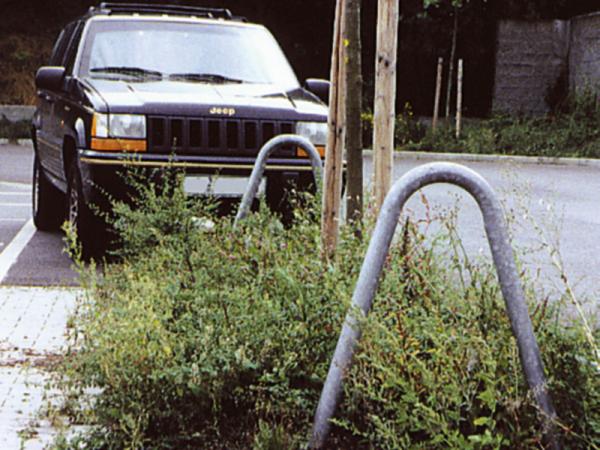Anlehn - Absperrbügel, Baumschutzbügel, Ø 60 mm, Breite 800 mm, Länge 1450 mm, zum Einbetonieren