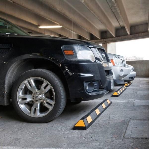 "Parkplatzbegrenzung ""Salamander"""